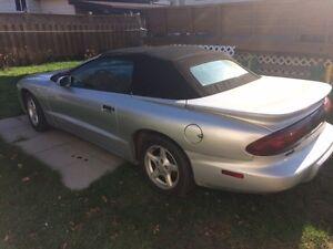 1996 Pontiac Firebird Leather Coupe (2 door)