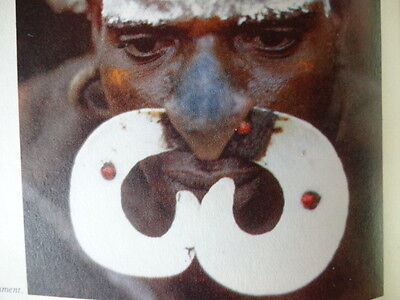 Tribal Asmat Plastic Nose Piercing Bipane Headhunting Papua New Guinea Rare Art