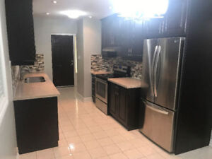 RENOVATED HOUSE FOR RENT IN GREAT NEIGHBORHOOD