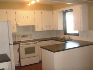 Bright & Sunny 2 Bedroom Suite only 20 mins walk to U of L