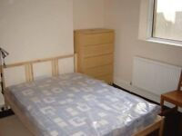 Free room at 8min walking from city centre