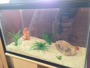 30 gallon aquarium wth stand and lots of accessories !Great deal