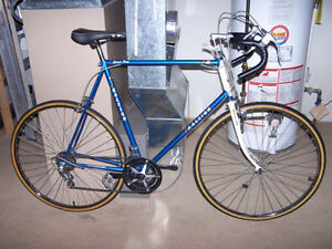 Tall Raleigh Grand Prix ----- 15-speed Touring / Commuter Bike
