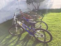 4 Bicycles for sale; $30 for each bike