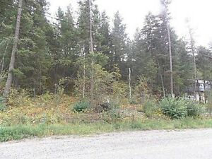 Rare Lake View Building Lot in Family Orientated Russet Bluff!! Williams Lake Cariboo Area image 6