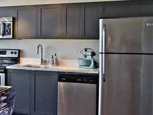 Home painters and kitchen cabinet painting by the Pros.