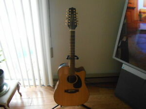 acoustic- electric Takamine 12 strings.
