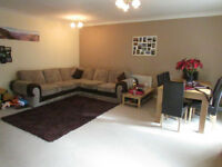 CALLING ALL STUDENTS 5 BEDROOM HOUSES AVAILABLE TO RENT IN CANARY WHARF FROM JULY AUGUST SEPTEMBER