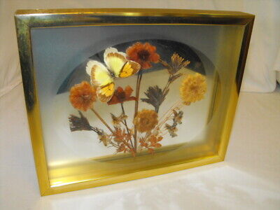 Dried Pressed Real Flowers (Vintage Framed Dried Pressed Flowers Floral Wall Art w/ Real Butterfly 1970's  )