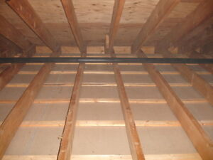 Bluetream  offers attic insulation/removal (Please Read!)