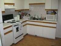 Lovely clean main level 2 br apartment