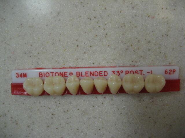 Dentsply Denture Trubyte BioTone 33° Lower Posterior Mould 34M / 62P