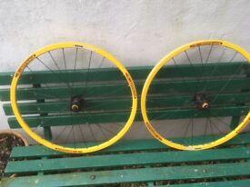 "A pair of Bontrager Race mountain bike disk wheels 26"""