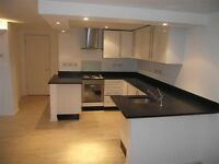 Large modern 4 bed apartment in South Woodford