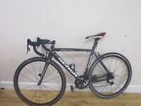 52cm Sensa Trentino SL superlight! road bike carbon forks