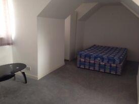 Spacious studio flat - HAS BEEN LET