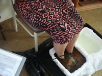 Ionic Cleanse Footbath Session ~ October only!