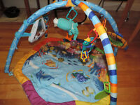 Activity Mat  - Baby Einstien