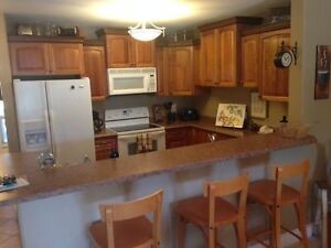 High End Condo in Beautiful Mabel Lake, BC - NEW Condition!