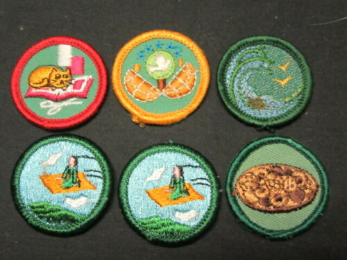 Girl Scout Patch Lot, Older and Recent, Lot of 40 plus    RR