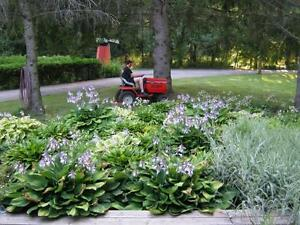 JP SERVICES - ALL SEASON YARD CLEANUP SPECIALITS Kitchener / Waterloo Kitchener Area image 2