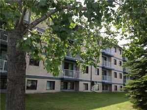 Dalhousie NW - One bedroom - Across from Coop