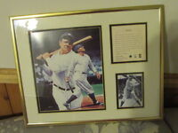 Framed Babe Ruth Picture and Bio