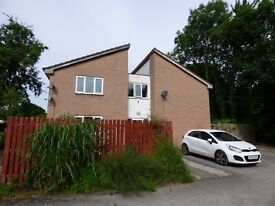 Modern Studio Flat, Preston, Fully Refurbished with Garden and Parking