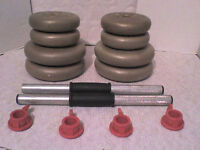 13.6 Kg 30 lb Gold Dumbbell Weights - Heathrow