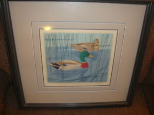 A.J.Casson framed and hand signed print- Mallard in Reeds