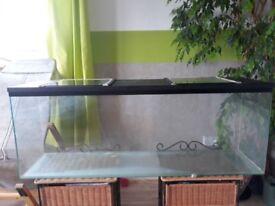 Glas tank for gerbils rats hamsters degu etc.