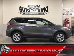 2013 Ford Escape SE / All Wheel / No Accidents / 1 Owner / Local