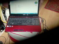"15.4"" inch red toshiba satellite b950 laptop windows 7 home 300 gig hdd 2.10 ghz dual core pwo £95"