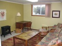January 1 availability -- furnished 1 bedroom apt in Waterloo