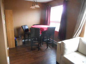 Furnished one bedroom Apartment -Available June 1st