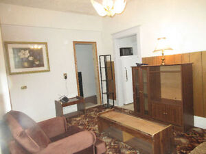 Bright furnished one bedroom studio apartment.