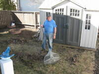 Yard Maintenance and General Cleanup