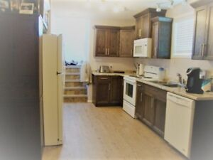 1 bedroom basement suite for rent, utilities included - $700, AB
