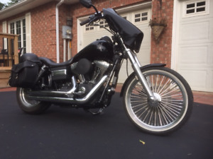 Spring is coming - be the first out on a VERY nice Street Bob