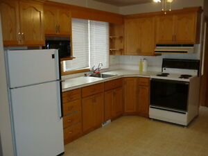 2076 Reynolds. Avail. Nov 1 or Dec1. Pet friendly and spacious!