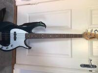 Electric Bass Guitar & Case