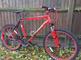 "Specialized Hardrock Mountain Bike 23"" frame"