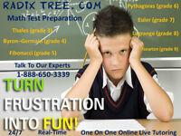 IELTS Academic Tutoring / English & Math Tutors /Assignment Help