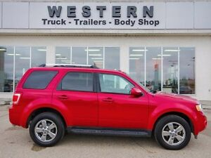 2011 Ford Escape Limited Moose Jaw Regina Area image 8