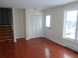 Beautiful Three level split for rent in Springdale