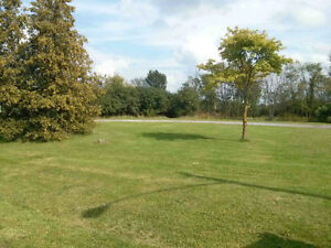 1.6 Acre Lot in Almonte for Lease/Rental