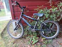 Chikds Bike RALEIGH SABATOR