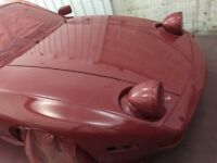 Auto painting professional & MORE