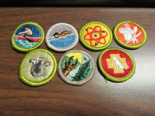 Boy Scout Embroidered Merit Badges, 7 Waffle Backs   c36