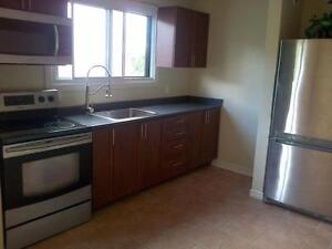 1 Bedroom Unit Available December 1st or 15th Kitchener / Waterloo Kitchener Area image 3